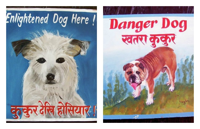 Nepalese Beware of Dog Signs Lola Who Blog