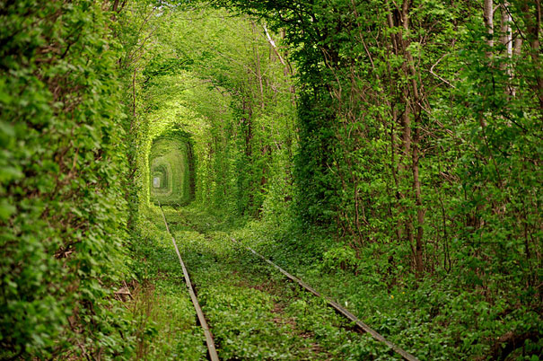 Tunnel of Love Ukraine Lola Who Fashion blog
